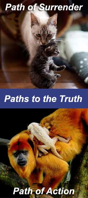 Paths to the Truth